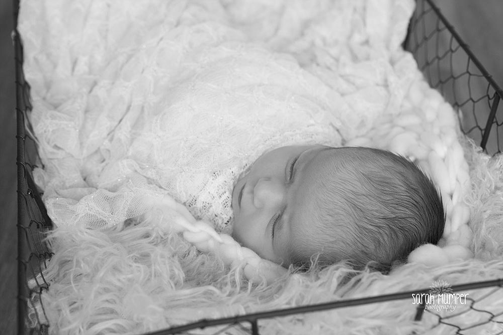 Juilana's  Newborn_0242.jpg