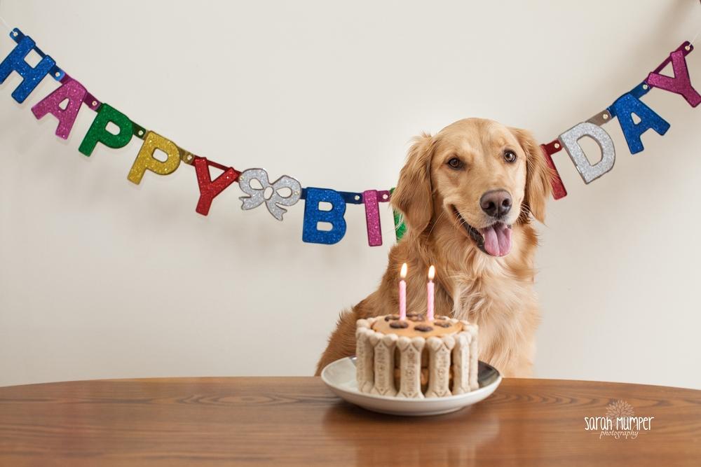 Lucy's 2nd Birthday_0702.jpg