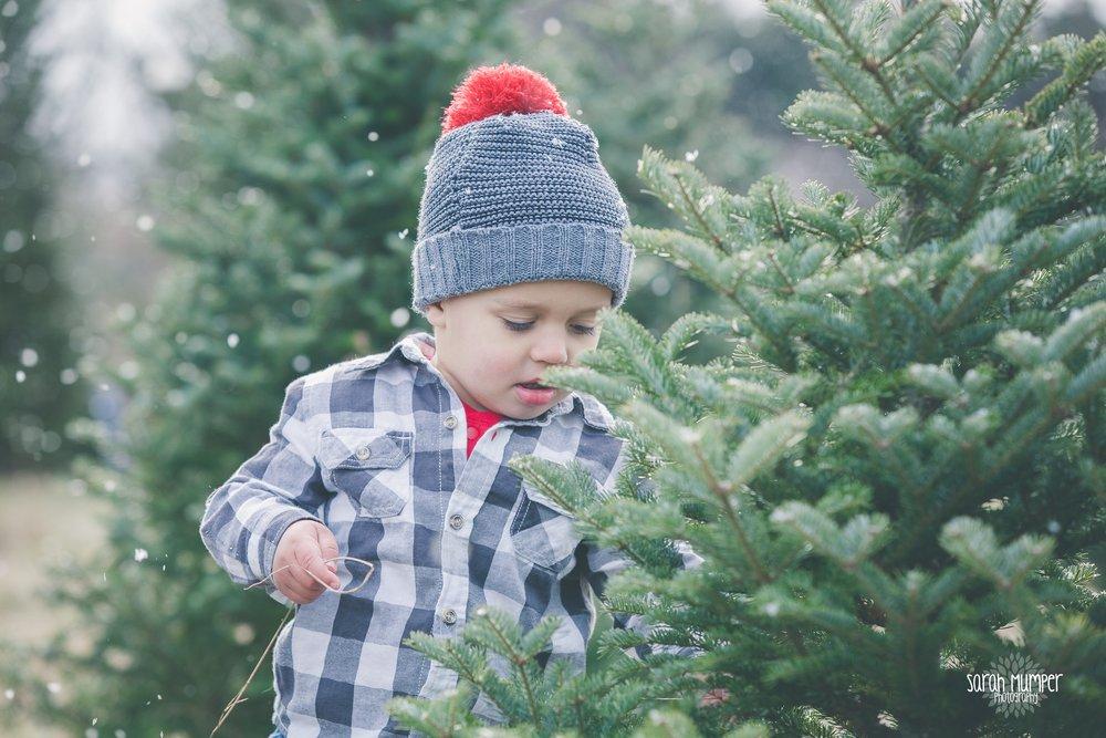 Clayton Christmas (21).jpg