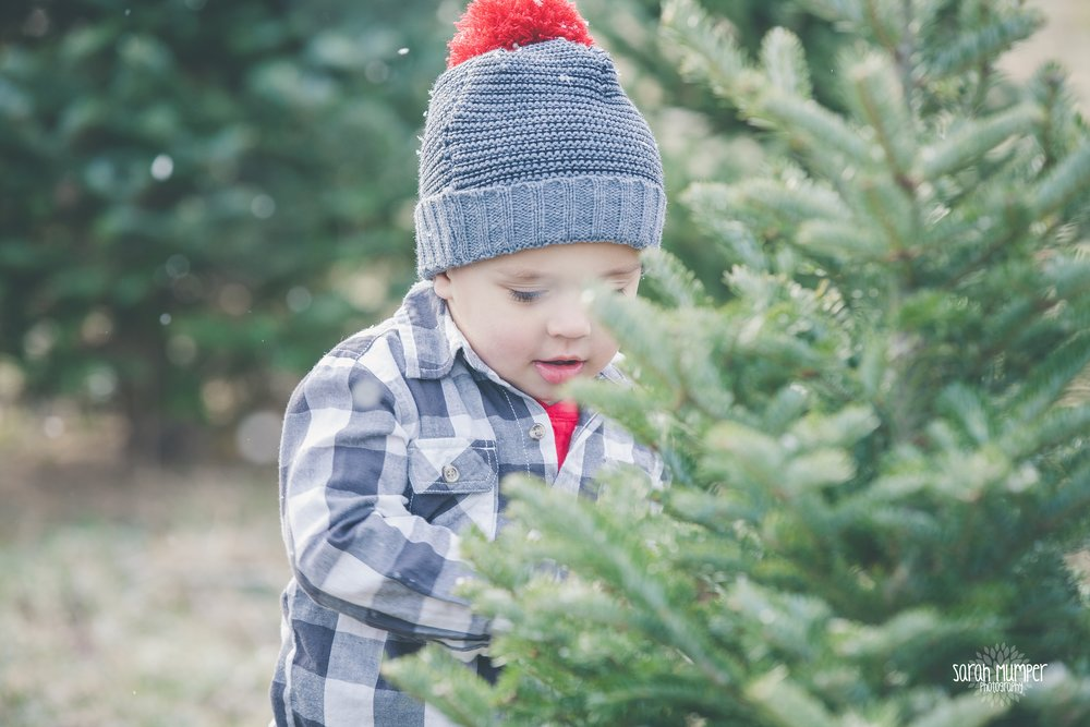 Clayton Christmas (22).jpg