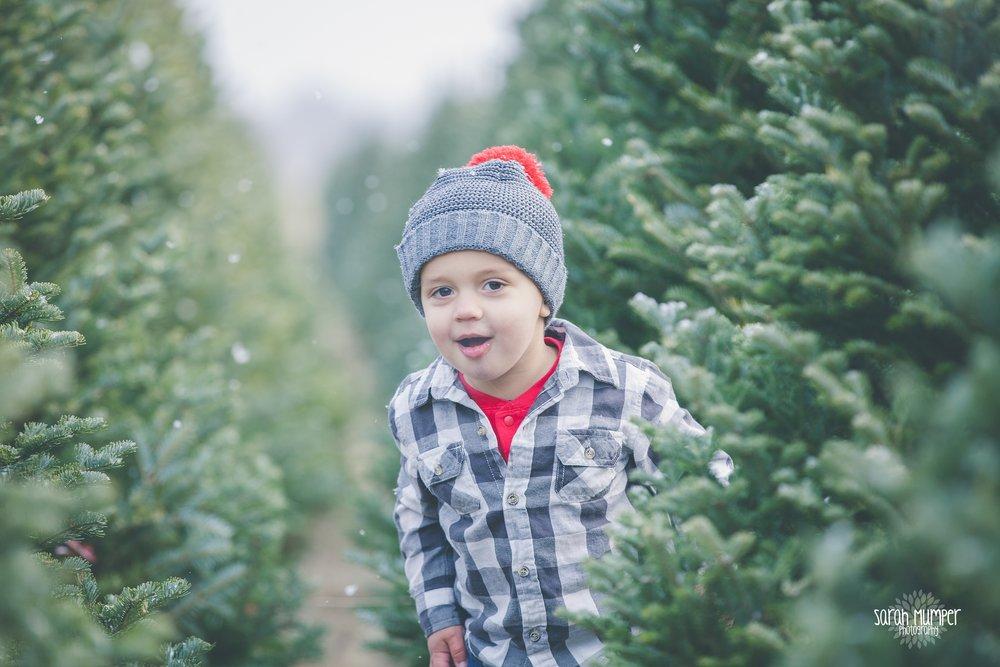 Clayton Christmas (23).jpg