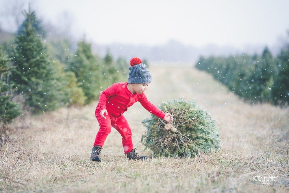 Clayton Christmas (29).jpg
