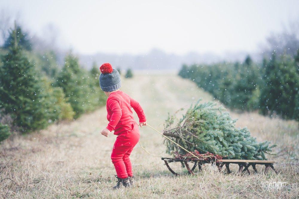 Clayton Christmas (32).jpg