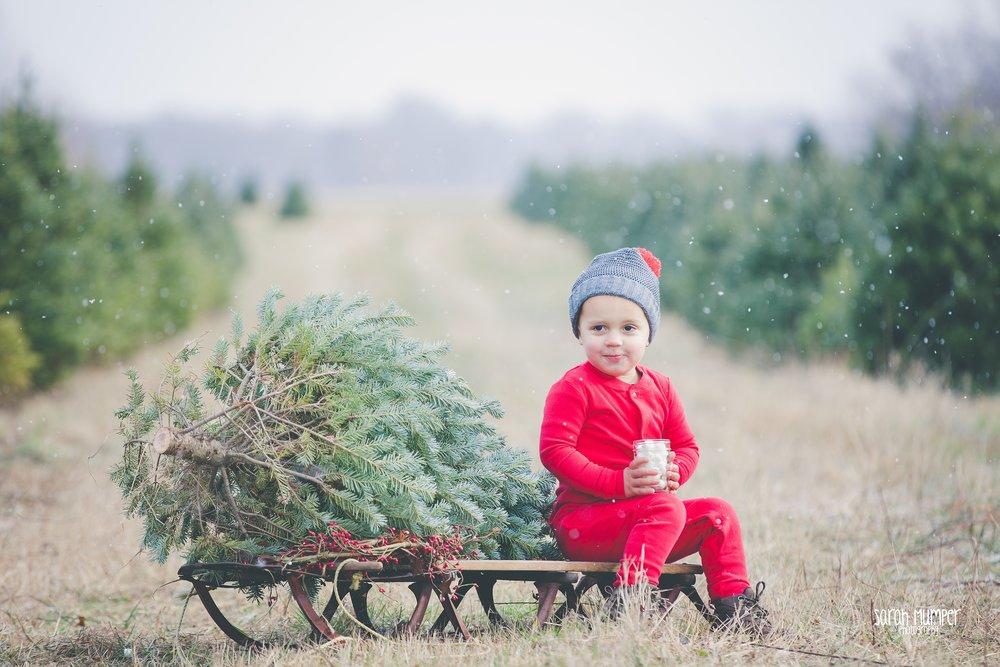 Clayton Christmas (34).jpg