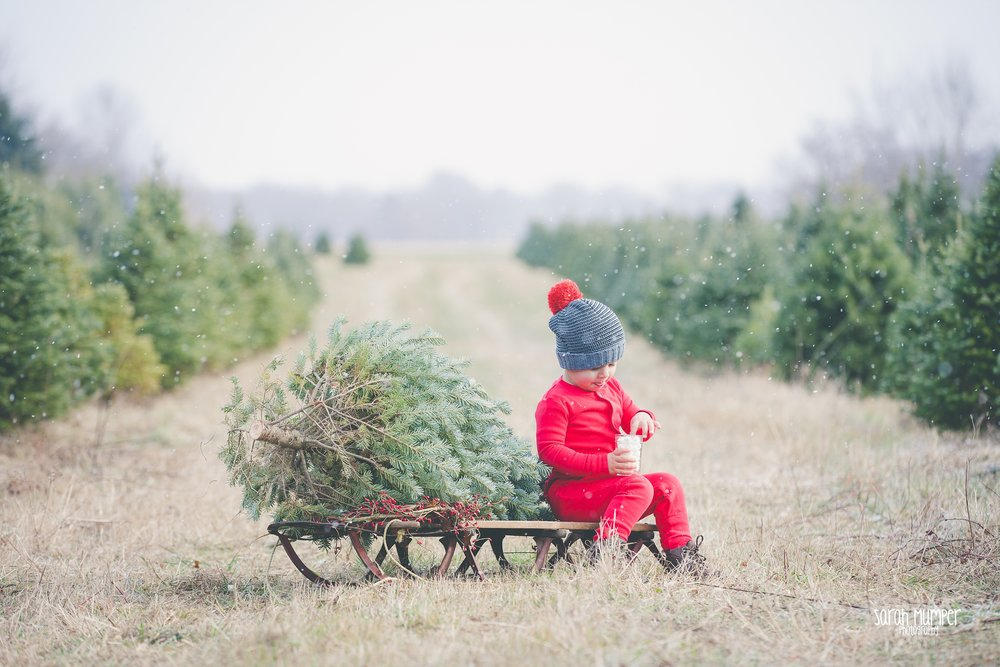 Clayton Christmas (33).jpg