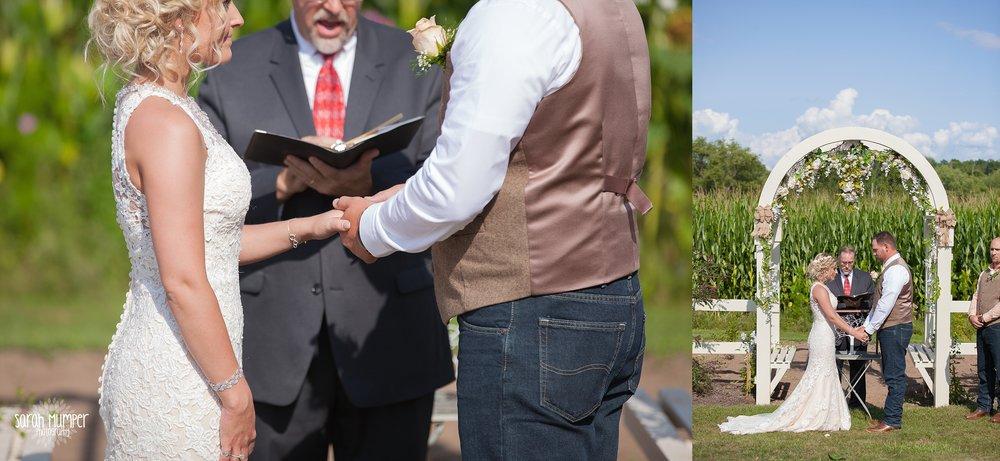 Shurmanek Wedding (46).jpg