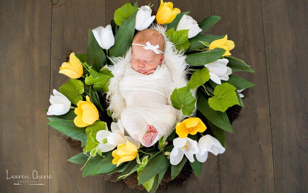 new mexico newborn photographer