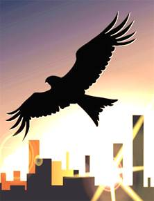 Bird for flyer.jpg