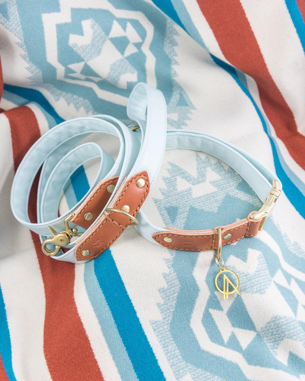 oliveandatlas_mint_collar_and_leash_on_pendleton.JPG
