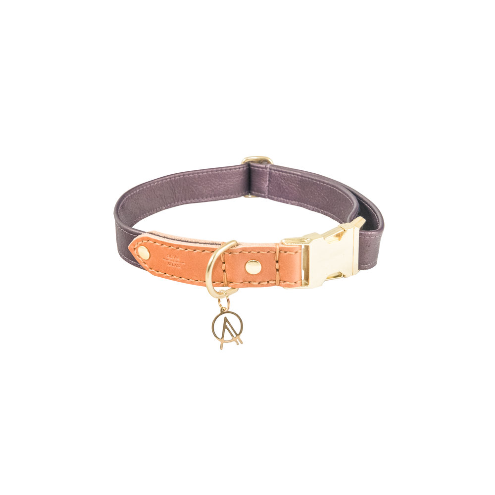 olive_and_atlas_dog_collar_amethyst.jpg