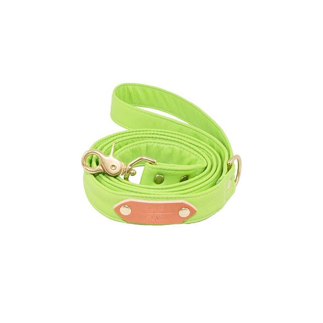 """Auction item #28: SIZE SMALL, """"Lime"""" O+A leash, handmade by us with lime green full-grain leather. Bidding starts at $20. Place bid in comments. Ends 11/16 at 6 PM PST. Winner pays shipping. All sales final. Good luck! — OLIVE + ATLAS"""