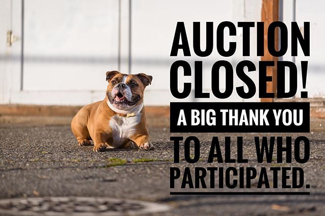 Our auction is now closed. Thank you to all who participated! To winners: invoices have been sent. Please pay by Monday, 11/19. 💛🌟 — OLIVE + ATLAS.
