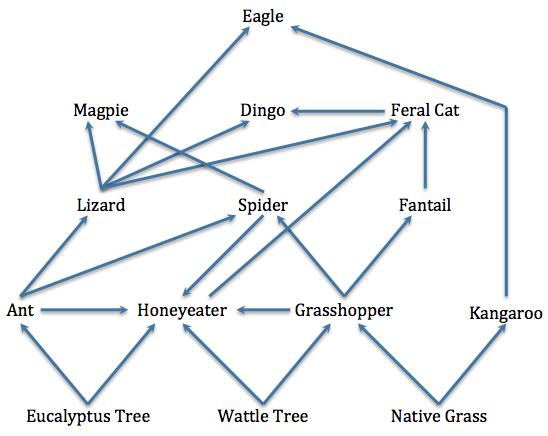 Food Web Feral Cats