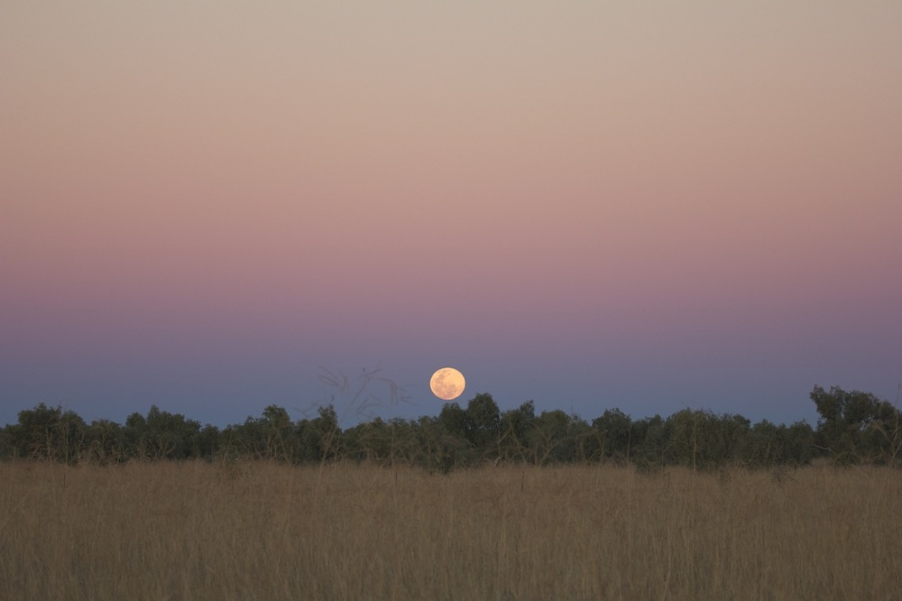 Moon rise over Connells Lagoon, NT