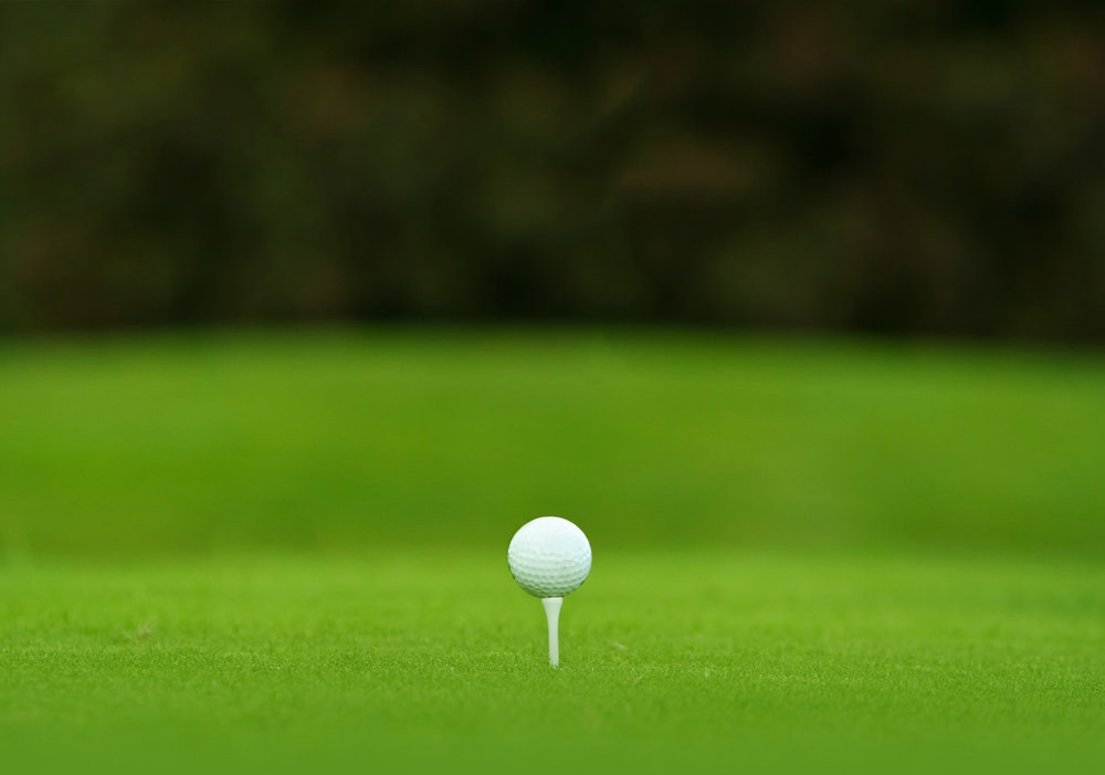Vanishing Golf Program.jpg