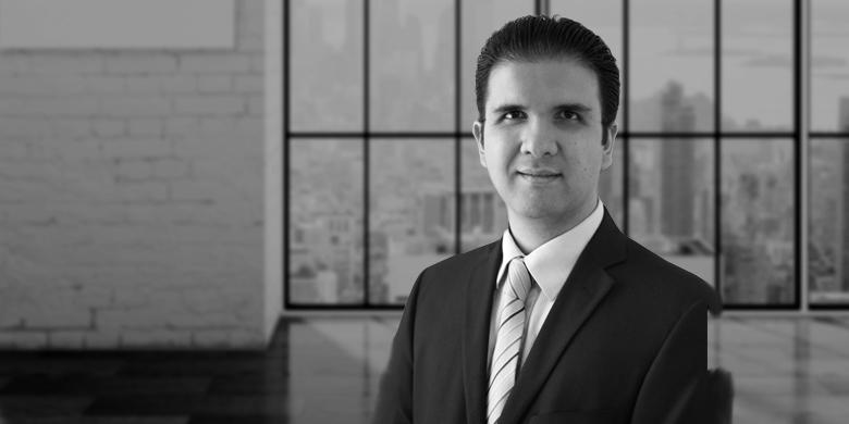 Raul Lujan (Associate, Professional Services – Americas)