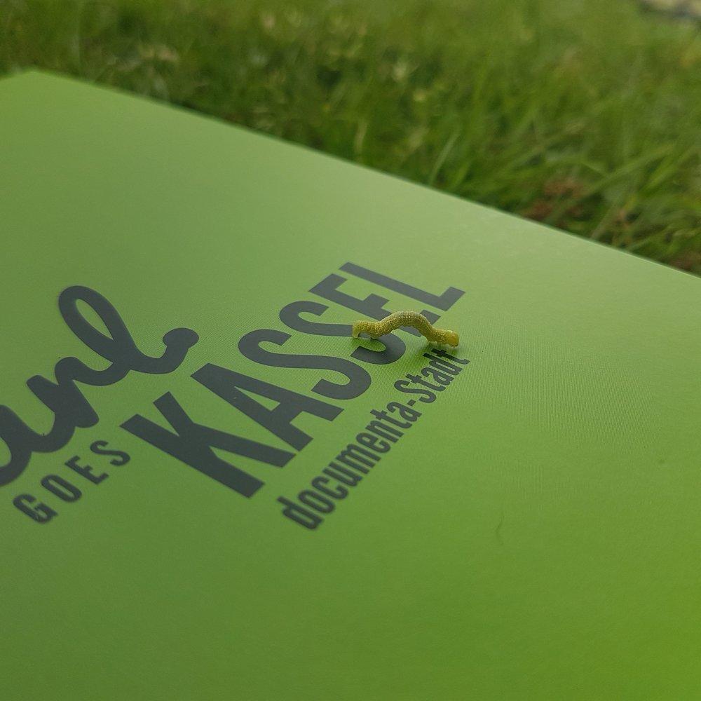 Carl Goes Kassel.jpg