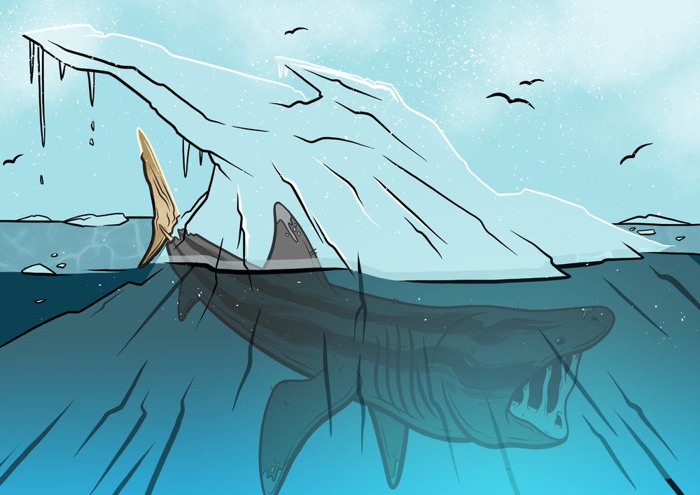 ice_shark_flats.jpg