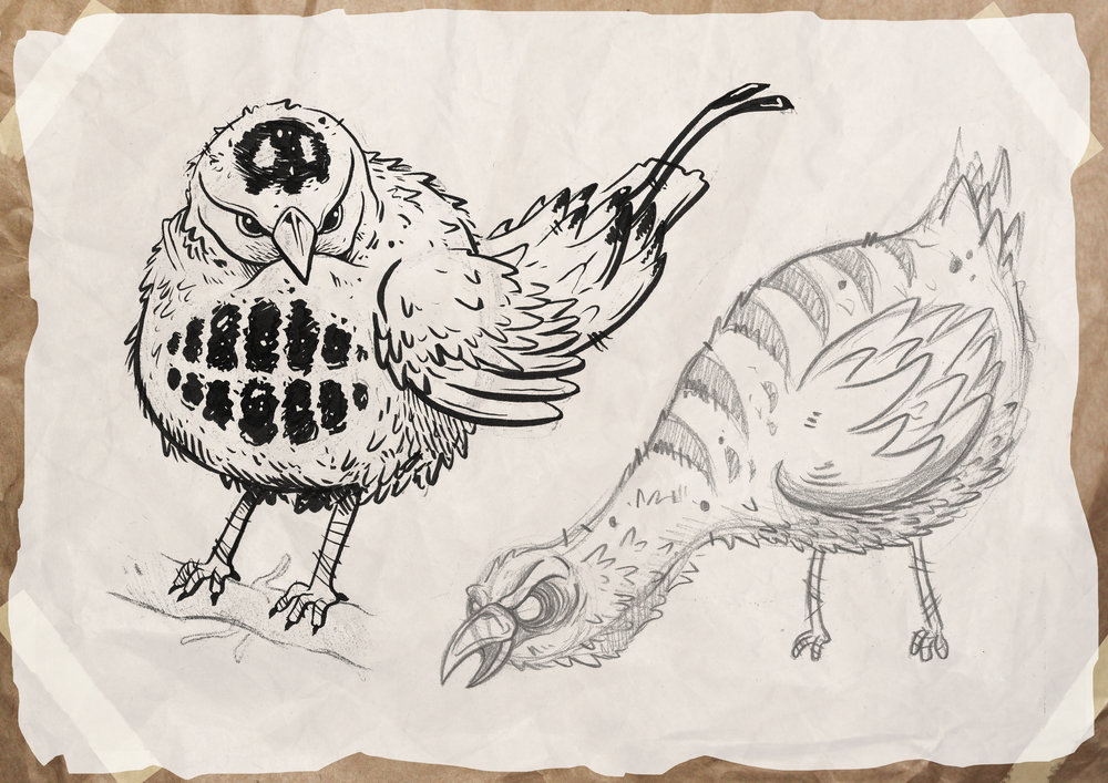 bird_sketches.jpg