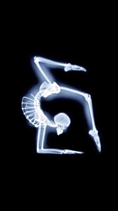 flexibilidad columna salud quiropractica yoga