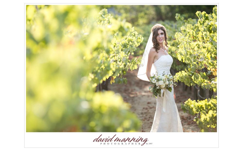 Ramona-Winery-San-Diego-Wedding-Photos-David-Manning-130906-0007.jpg
