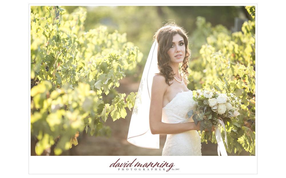 Ramona-Winery-San-Diego-Wedding-Photos-David-Manning-130906-0009.jpg