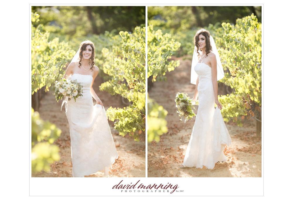Ramona-Winery-San-Diego-Wedding-Photos-David-Manning-130906-0011.jpg