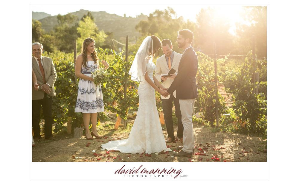 Ramona-Winery-San-Diego-Wedding-Photos-David-Manning-130906-0012.jpg