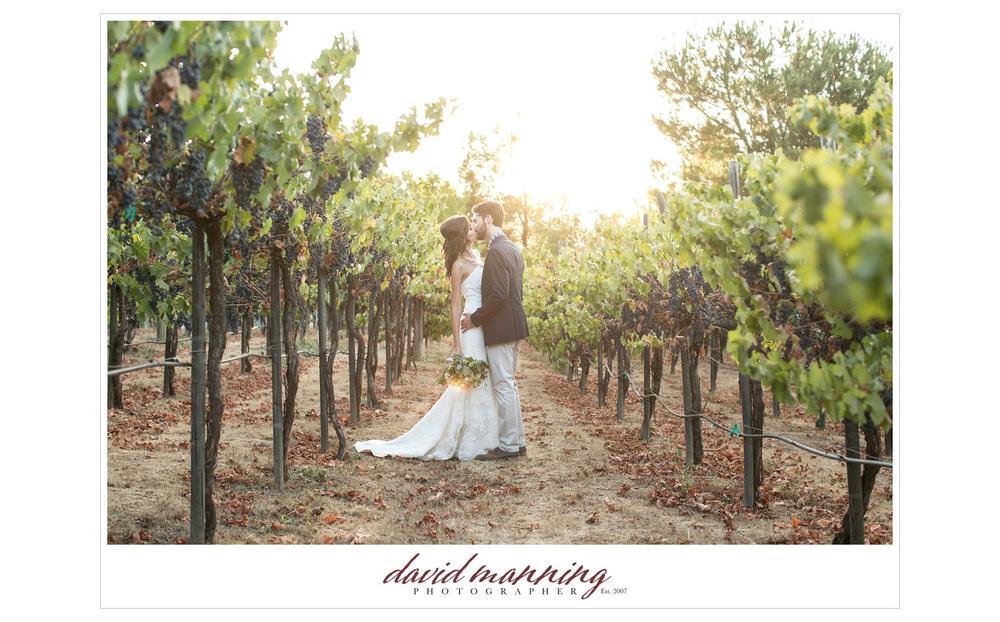 Ramona-Winery-San-Diego-Wedding-Photos-David-Manning-130906-0023.jpg