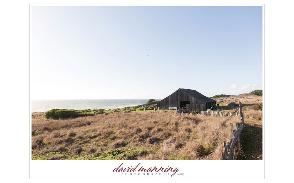 Sea-Ranch-Sonoma-Destination-Wedding-David-Manning-Photographers-141101-0025.jpg