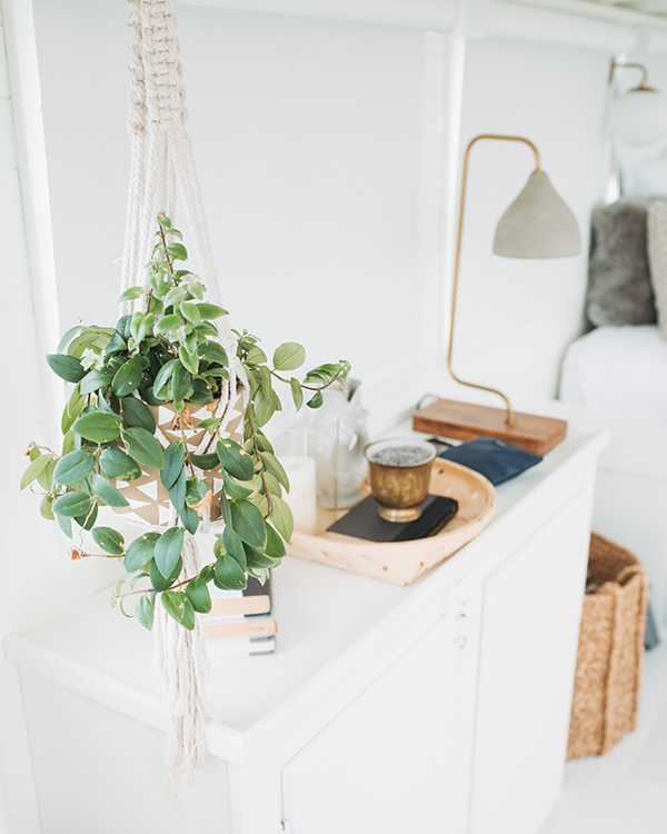katherine_mendieta_seattle_lakeside_lovenest_houseboat_plant.jpg
