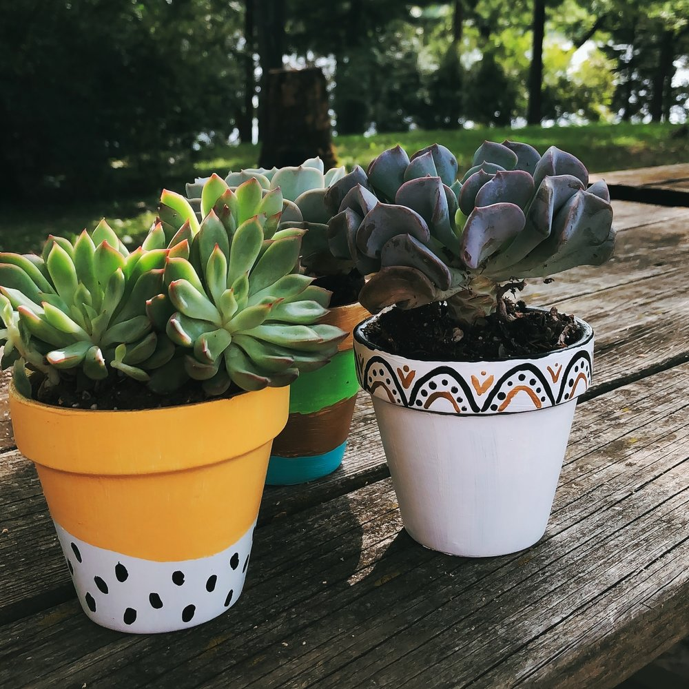 succulent_pot_painting_craft_home_depot.jpg