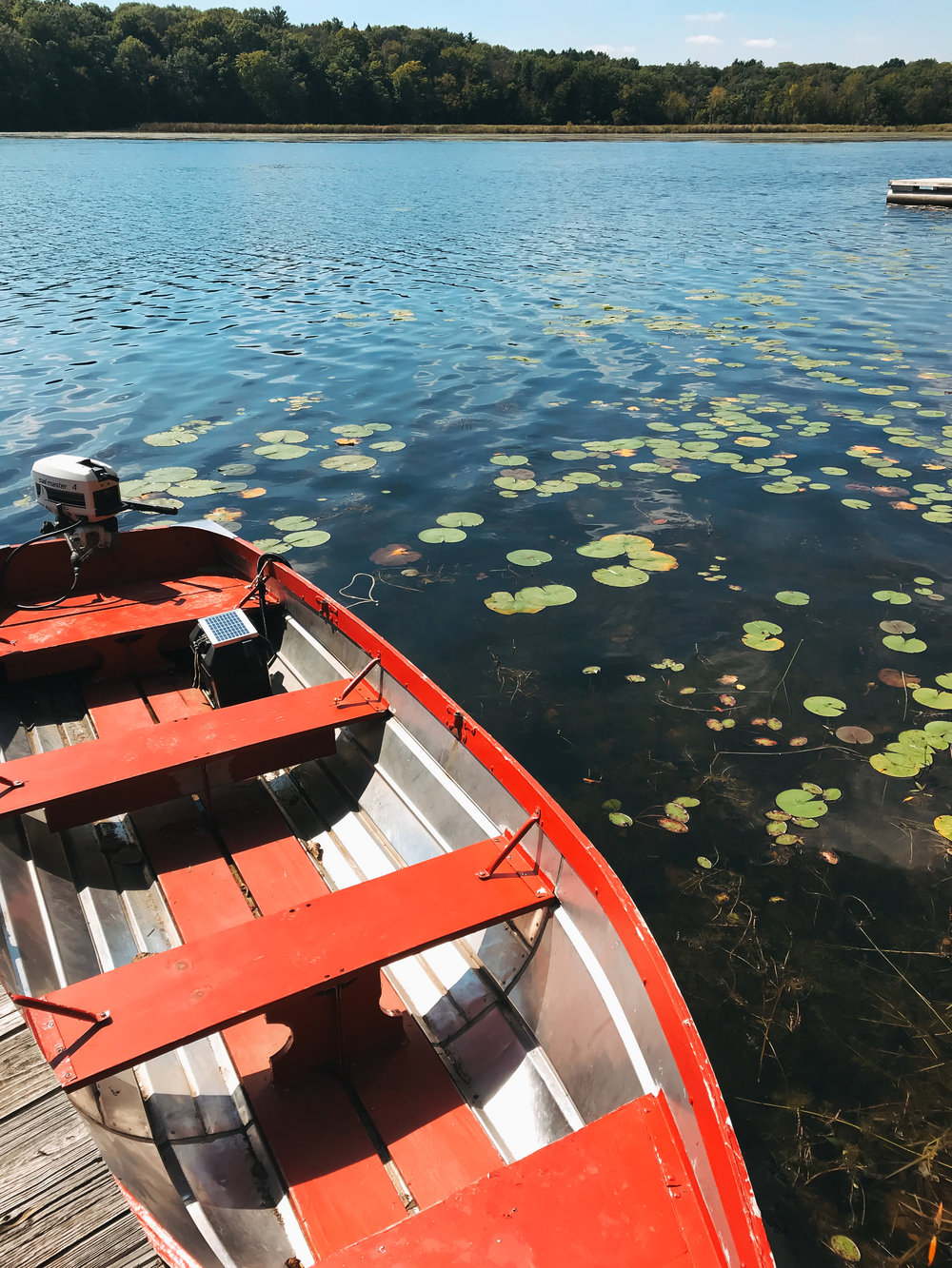 camp_wandawega_red_boat_lillies_water.jpg