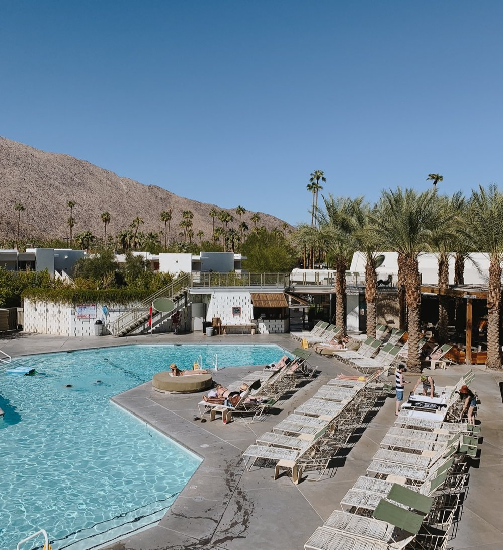 ace_hotel_palm_springs_pool_palm_tree.jpg