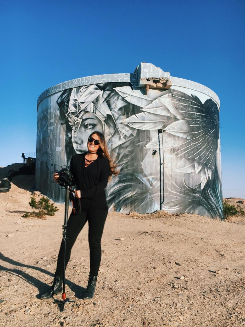 katherine_mendieta_kinetoscope_water_tower_murals..JPG