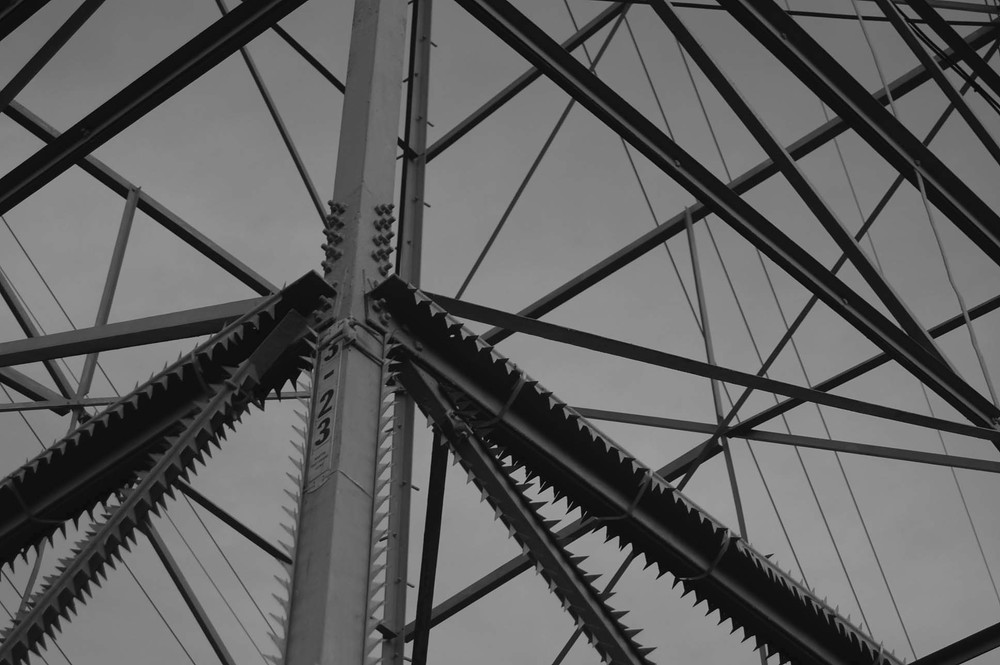 powerlines224bw.jpg