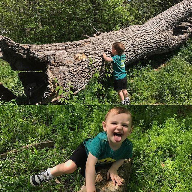 Endless fun, no toys or technology required! #mothernaturerocks #wanderlust #rewilding #friday