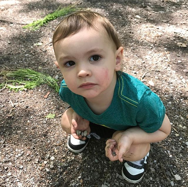 This is the confused look on my sons face after he was told that although we eat plants in the woods, we don't eat the rocks! Apparently there's a method to this foraging madness #mothernaturerocks #wanderlust #rewilding #tuesdaymorning #foraging
