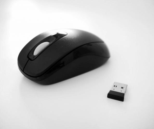 computer-mouse-1378562222jLR.jpg