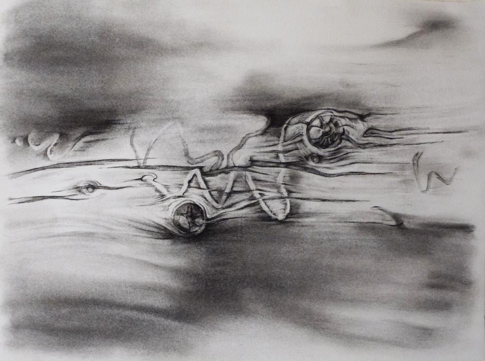 GSD, Study 3, Driftwood & Sky