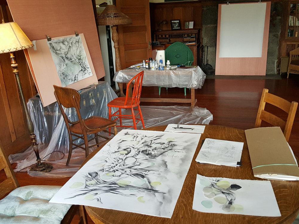 RMNP, Studio