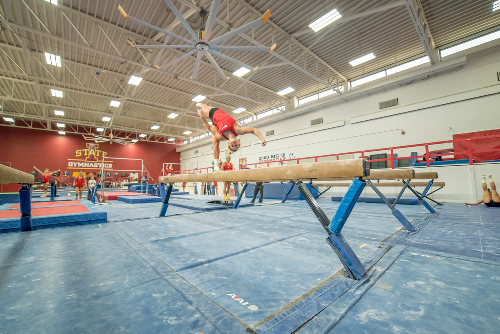 Haylee Young ISU Gymnastics-9.jpg