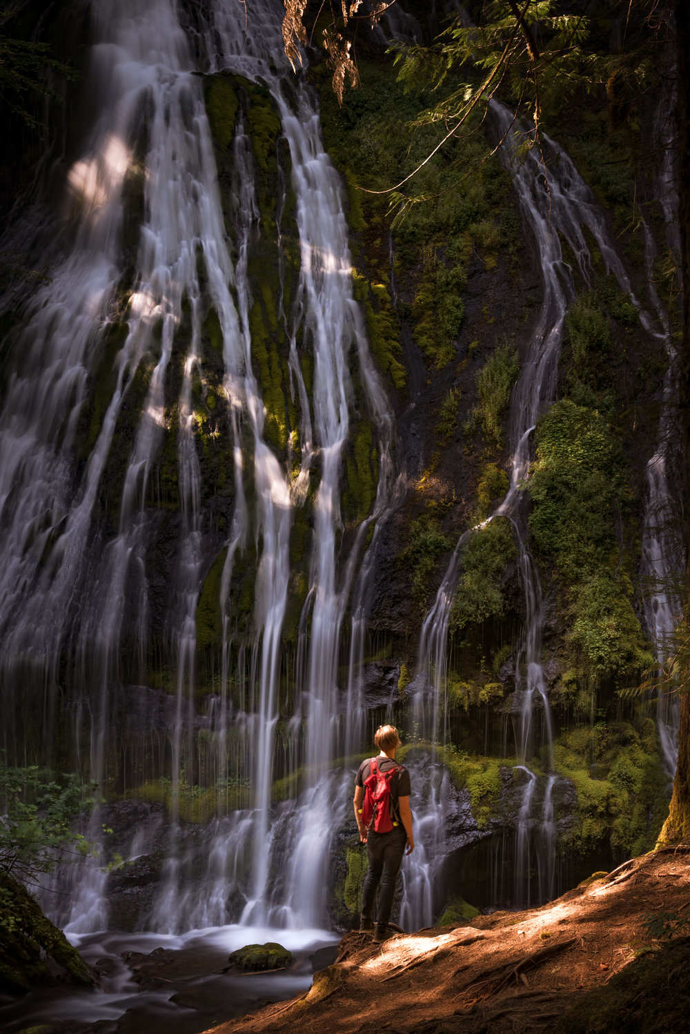 Teague standing in front of Panther Creek Falls.