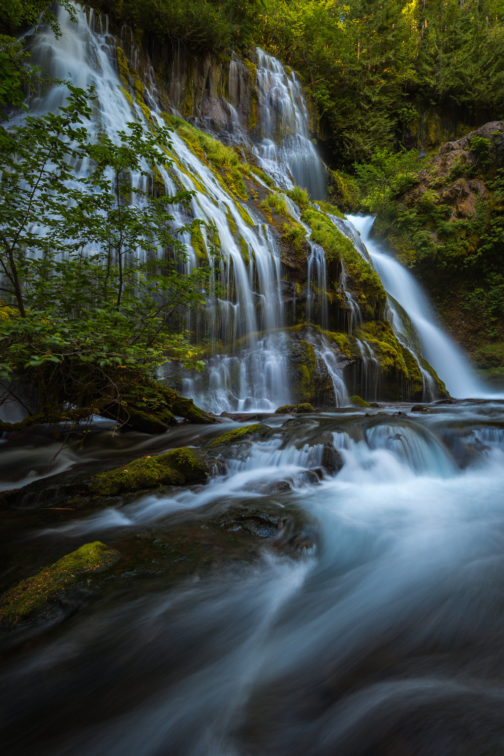 The portfolio piece I captured of Panther Creek Falls once the right conditions finally presented themselves.
