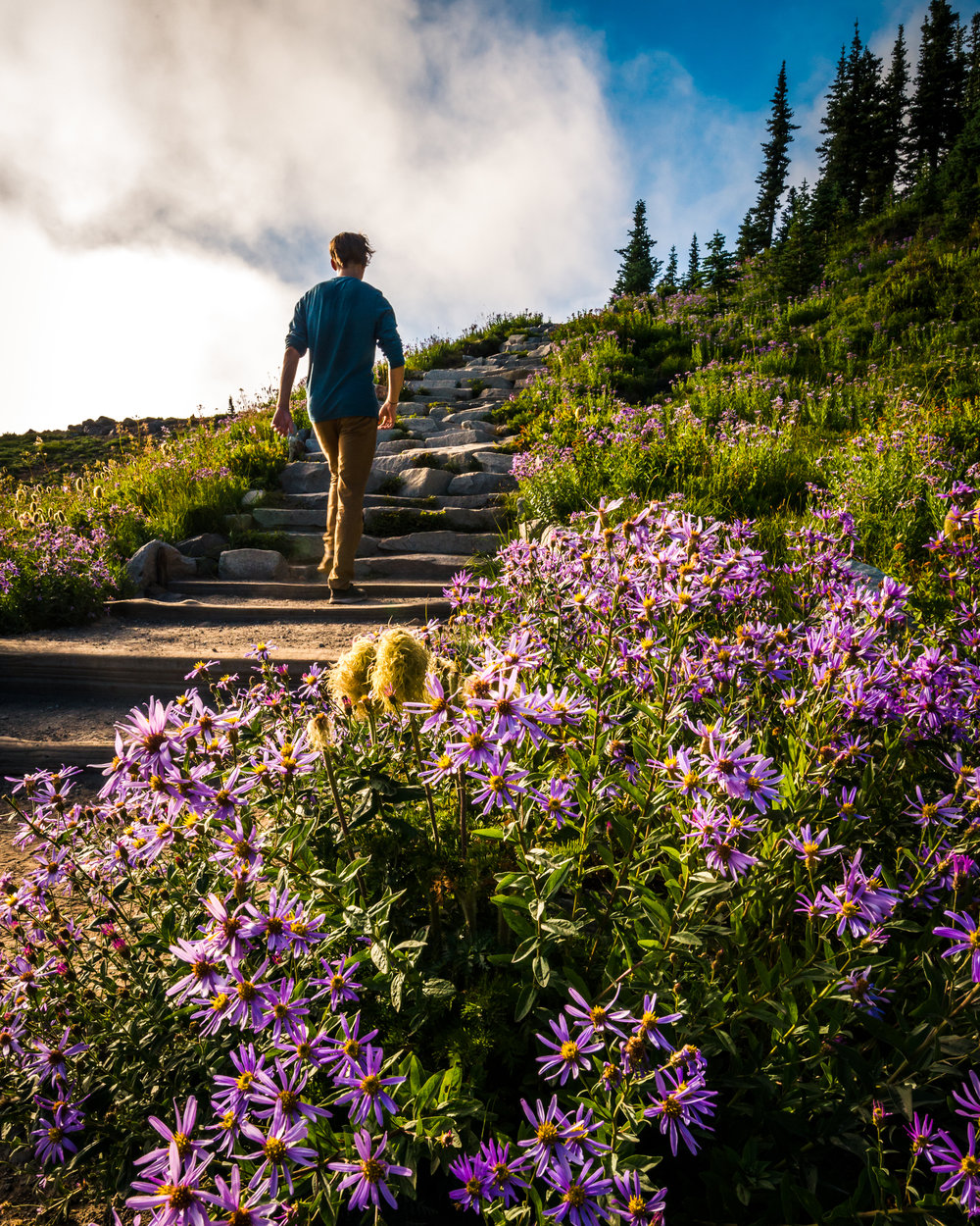 Mt. Rainier has amazing trails for its large number of visitors to hike.
