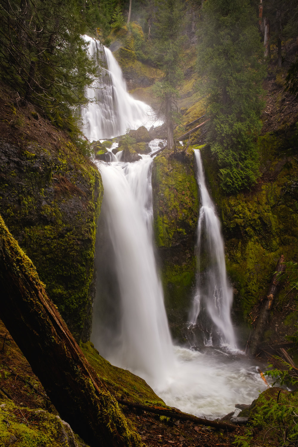 This waterfall can be found in an area which allows some logging done in a sustainable way called resource management. It just so happens to be in the Gifford Pinchot National Forest.