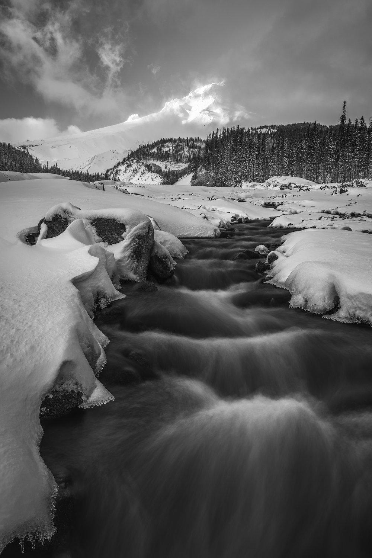 Mt. Hood Black and White sunset