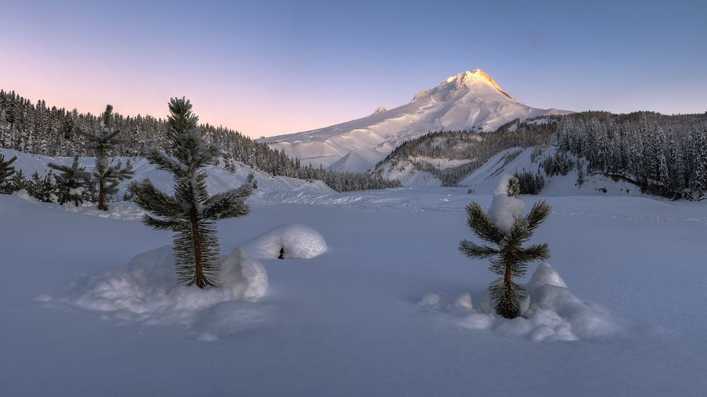 Mt Hood Oregon Pacific Northwest