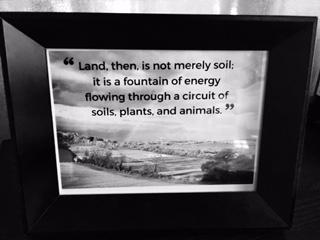 Soil Quote.jpg