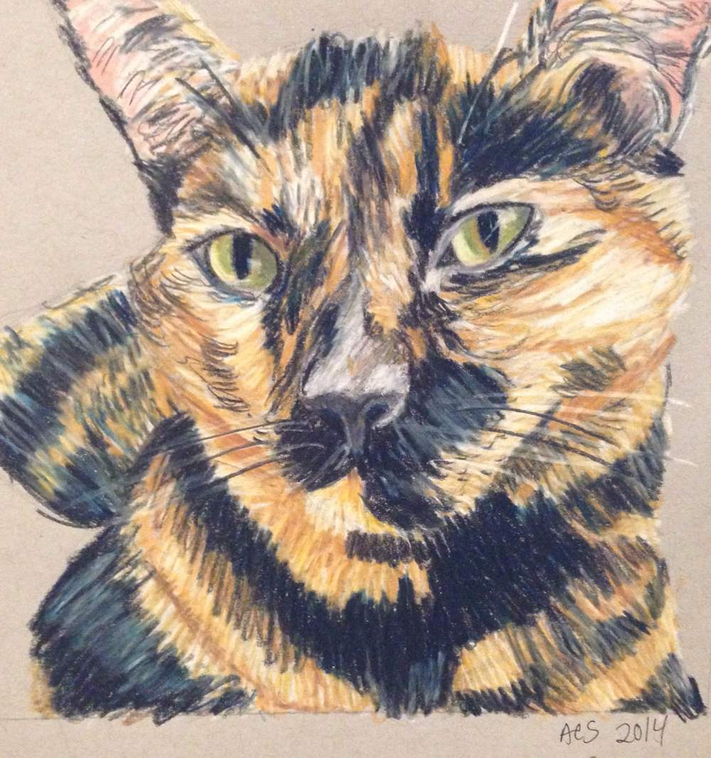 "Snickers. 6x6"". Colored pencil on paper. 2014."